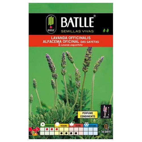 Portal Cool Aromatiques Batlle Graines - Lavanda officinalis (1G)