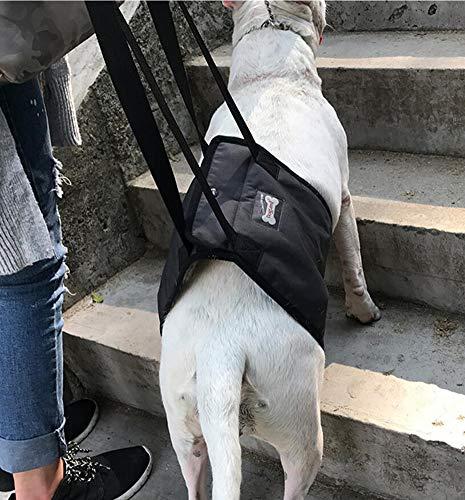 Diyafas Hundelift Harness Tragehilfe Hebehilfe Rehabilitation Geschirr mit Griff für Hunde Verletzungen und Arthritis