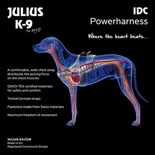 ユリウスケーナインIDCパワーハーネスグレイサイズ0