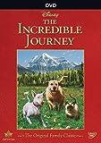 Incredible Journey [Edizione: Stati Uniti]