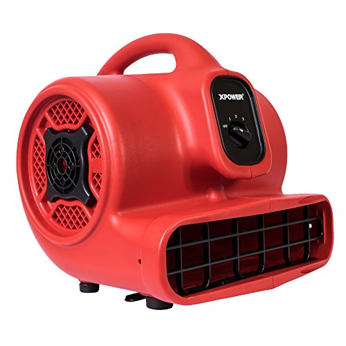 Best air mover carpet dryer