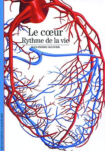 Le Coeur Rythme De La Vie