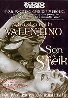 Son of Sheik [DVD] [Import]