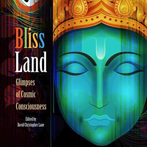 Couverture de Bliss Land