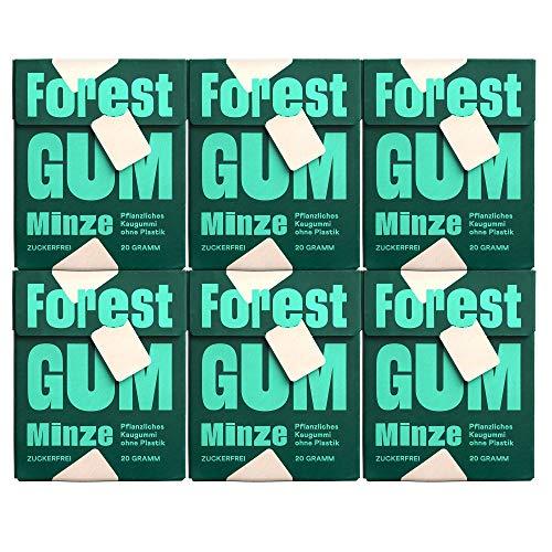FOREST GUM Minze | Plastikfreies Kaugummi mit Minz-Geschmack | Pflanzliche Zutaten | ohne Zucker | Vegan | 6 x 20 Gramm