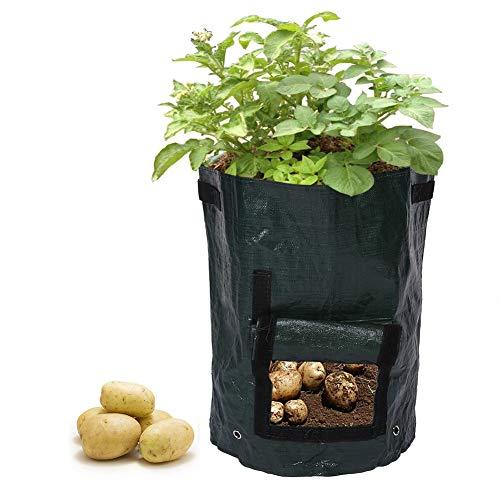 1Pc Aardappelkweek Planter Zakken PE Planten Container Zak Buiten Roestwerende Tuin Met Zijruit En Handgrepen Groenteplanter Voor Huis Balkon Buiten