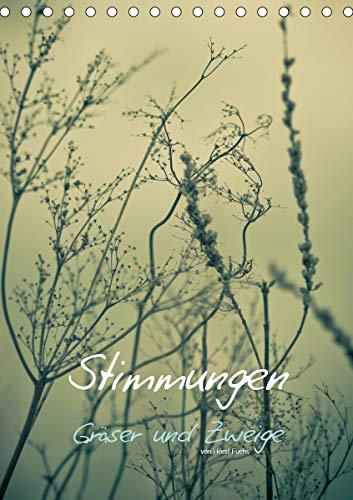 STIMMUNGEN - Gräser und Zweige (Tischkalender 2021 DIN A5 hoch)