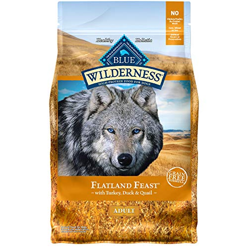 Blue Buffalo Wilderness Flatland Feast High Protein, Natural Dry Dog Food with Turkey, Quail & Duck 4-lb