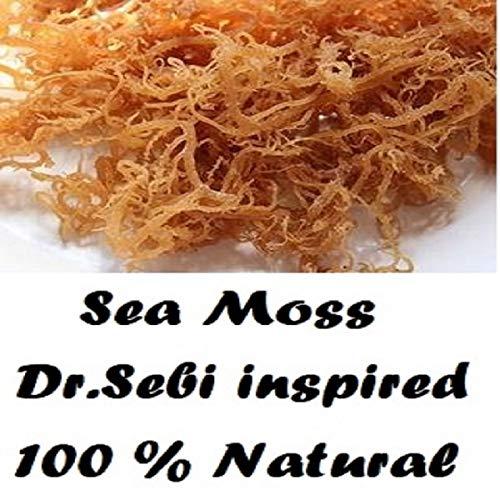 NATURAL,SEA MOSS (RAW) 8 0Z - IRISH MOSS,CHONDRUS CRISPUS,Jamaica Drink Below