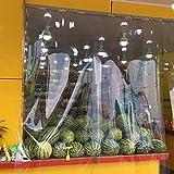 ZKORN Red de Sombra a Prueba de Agua, Lona Transparente Impermeable de Alta Resistencia Lona Transparente Jardín Tela a Prueba de Lluvia Cubierta de Cultivo de Invernadero Resistente al frío