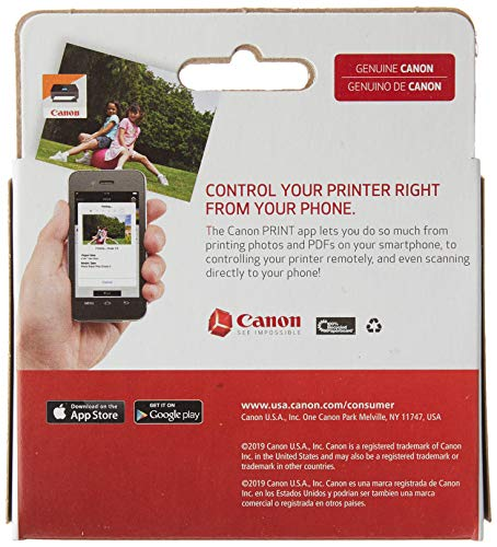 Canon PGI-280 / CLI-281 5 Color Ink Pack, Compatible to TS8120,TS6120,TR8520,TR7520, and TS9120 Wireless Printers, Multi, PGI-280 Full Standard Set Photo #3