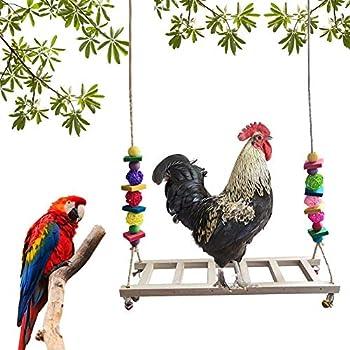 Balançoires De Poulet Pour Oiseaux Pour Grand Oiseau, Perroquet, Poule, Ara Balancoire Oiseau Perchoir Poulet Perroquet Jouet À Mâcher Accessoires De Poulet Perchoir Perroquet Pour Grand O