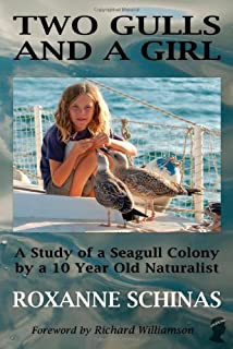 Two Gulls and a Girl: A Study of a Seagull Colony by a 10 Year Old Naturalist