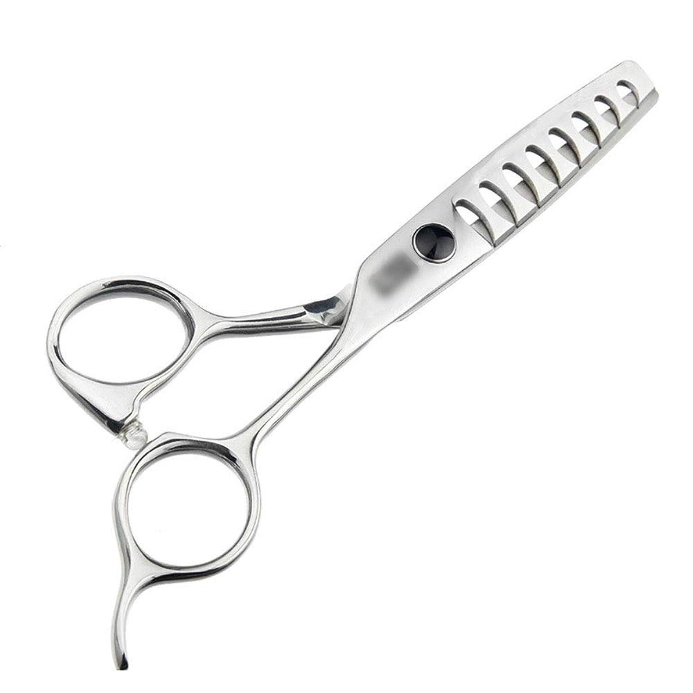 平衡思春期の憂鬱トリミングシザー 5.5インチの高級ヘアカットの魚の骨のはさみ、継ぎ目が無い毛はさみの毛の切断はさみのステンレス製の理髪師のはさみ (色 : Silver)