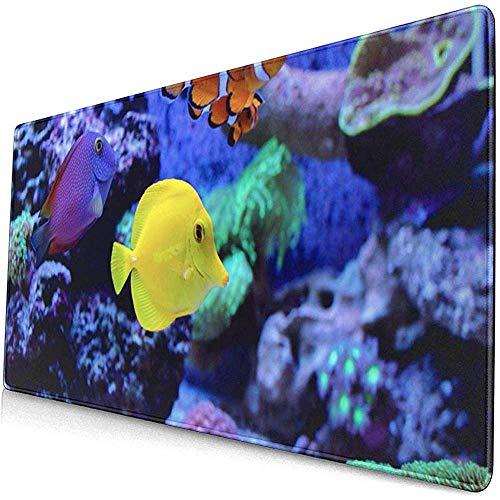 Gaming Extended Mouse Pads mit Rutschfester Gummibasis Rot Blau Salzwasser Erstaunlicher Korallenriff Aquarium Moment Bunt 30X80 cm