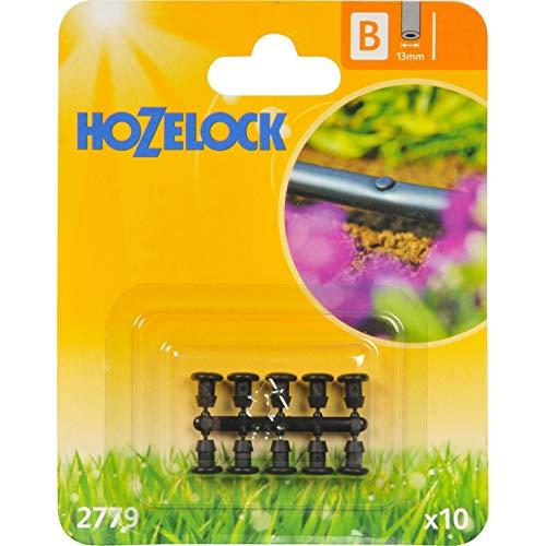 Hozelock Micro 2 prises – 2779