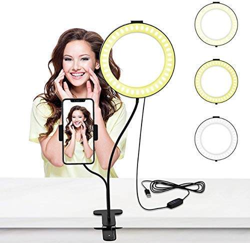 Ring Fill leichte Handy Live Support Clip Desktop-Folding Schönheit Selfie Lampe Anker Reisenden Schönheit Kunst Led Hintergrundbeleuchtung 8 Zoll DDLS (Color : -)