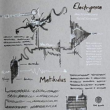 Metikulus