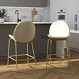 CosmoLiving by Cosmopolitan Astor Upholstered Counter, Ivory Velvet with Brass Metal Leg Bar Stool