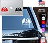 Supernatural Castiel Angel Wings Anti possession Series Vinyl Decal Sticker - Car Window, Laptop Skin, Wall, Mac (5.5 inches, White)