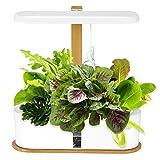 Kacsoo Sistema de cultivo hidropónico inteligente, sistema de germinación hidropónica con luces LED ajustables, bomba de circulación y polvo de nutrientes, plantas, verduras y frutas