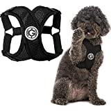 Gooby Comfort X Step in Harness - Black, Small - No Pull Small Dog Harness Patented Choke-Free X Frame - Perfect on The Go Dog Harness for Medium Dogs No Pull or Small Dogs for Indoor and Outdoor Use