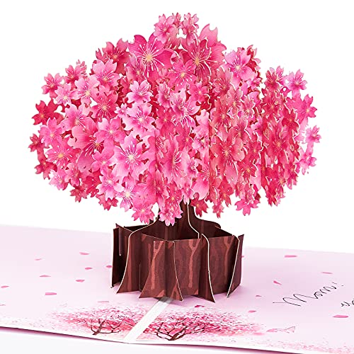 PartyWoo Pop Up Cards, Cherry Blossom Birthday Cards for Women, Blank Greeting Cards, Happy Birthday Card, Pop Up Birthday Card, Thank You Cards, Love Pop Up Cards, Birthday Card for Mom, Wife