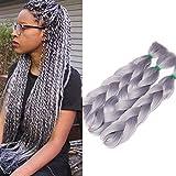 24'(60cm) SEGO 3PCS Extensiones para Trenzas Africanas [Gris] Pelo Sintético Se Ve Natural Crochet Braiding Hair (300g)