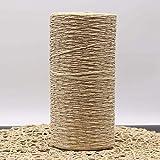 DAYI Hilo de Paja de Rafia teñido de Hilo de Ganchillo para Tejer DIY Sombrero de Paja de Verano Bolsos de Mano Cojines cestas Material 500 g/Rollo, Beige