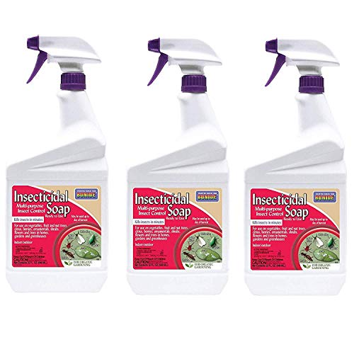 Bonide Products INC 912102 652 Ready-to-Use Insect Soap, Quart, 3 Pack