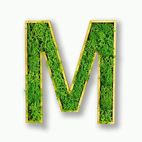 Acryltypo Moosly® Holz Buchstabe M gefüllt mit frischem Moos selbstklebend, antibakteriell, reguliert die Luftfeuchtigkeit, Made in Germany (ca. 12 x 6 cm, grün mit Birkenholz)