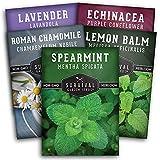 Survival Garden Seeds Herbal Tea Collection Seed Vault - Lavender,...