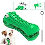 LOYY Dog Chew Toys or Aggressive Chewers, Natural Rubber Dog Toothbrush Toys with Cleaning Brush, Molars Toy with Sound Bite Resistant Dog Bites Toys, Squeaky Dog Toys for Medium Large Dogs
