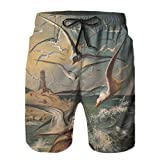 Aerokarbon Hombres Playa Bañador Shorts,gaviotas en una Costa con litografía de Faro publicado en,Traje de baño con Forro de Malla de Secado rápido M