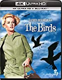鳥 4K Ultra HD+ブルーレイ[Ultra HD Blu-ray]