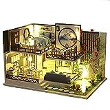 Fsolis Miniatura de la casa de muñecas con Muebles, Equipo de casa de muñecas de Madera 3D, más Resistente al Polvo y el Movimiento de música Regalo Creativo (M29)