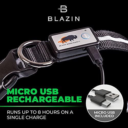 Product Image 8: Blazin' Safety LED Dog Collar