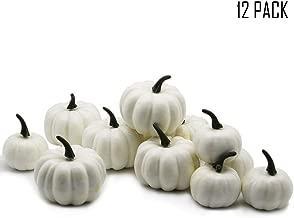 Best artificial white pumpkins for sale Reviews