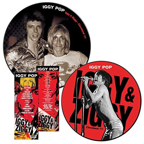 Iggy & Ziggy Cleveland '77