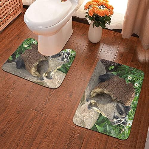 Bathroom Antiskid Pad Raccoon Statue Printed Bathroom Rug Mats Set 2 Piece Soft Pads Bath Mat + Water Absorption Contour 40x60cm