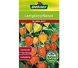 Dehner Blumen-Saatgut, Lampionpflanze, 5er Pack (5 x 1 g)