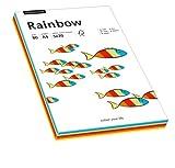 Papyrus 88043188 Drucker-/Kopierpapier farbig: Rainbow Intensiv-Mix 80 g/m² DIN-A4, 100 Blatt Buntpapier