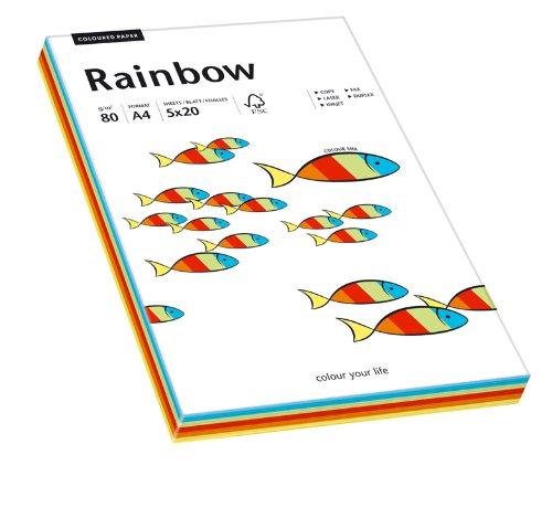 Papyrus 88043188 printer-/kopieerpapier gekleurd: Rainbow Intensiv-Mix 80 g/m2 DIN-A4, 100 vellen gekleurd papier