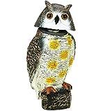 PrimeMatik - Ahuyentador de Aves Tipo Estatua búho con Ojos Reflectantes 40cm Macho