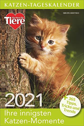 Katzen-Tageskalender 2021