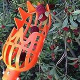 Cicony Panier à Fruits en Plastique avec tête de Panier, Outil d'économie de Travail pour récolter Les Fruits de la Pomme, Mangue, pêche, Kiwi, Citron, Cerise, Orange, Taille Unique