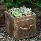 CCAN Macetas de madera para exteriores Macetas de madera para jardín, macetas vintage para plantas...