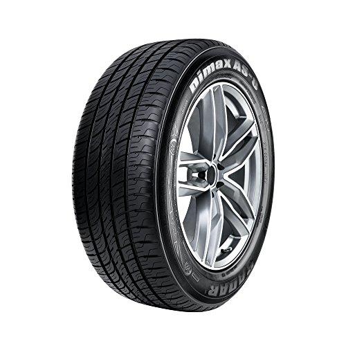 Radar Tires Dimax AS-8 Touring Radial Tire - 205/50ZR17 93W