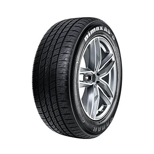 Radar Tires Dimax AS-8 All-Season Radial Tire - 235/40ZR19 96W