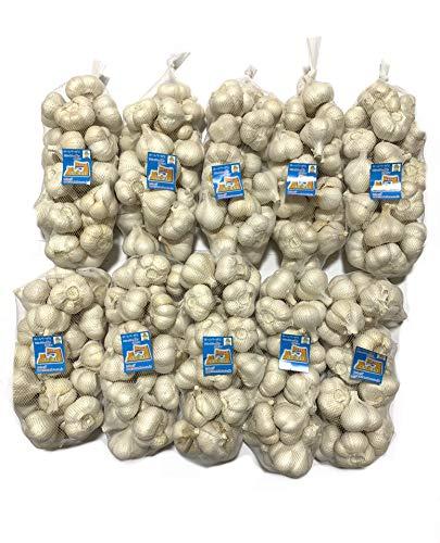 にんにく 青森県産 ホワイト六片にんにく 訳ありにんにくMサイズ10kg